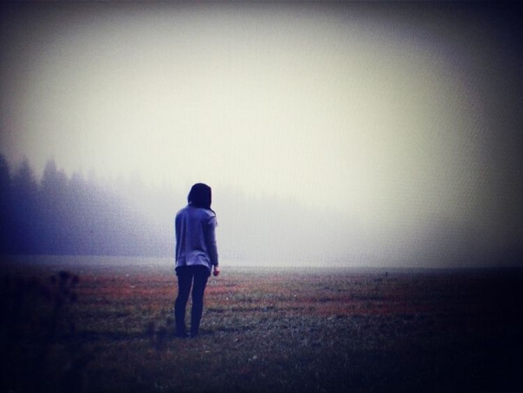 Melancholic Landscapes That's Me Misty Evening Countryside