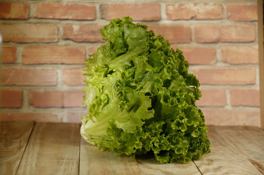 alface lettuce Vegetarian Food Raw Food Focus On Foreground Alface Crespa Alface Nature Plant Part Leaf Plant Still Life Close-up Indoors  Table Wall - Building Feature Freshness Vegetable Healthy Eating No People Food And Drink Wall Food Wellbeing Brick Green Color Lettuce