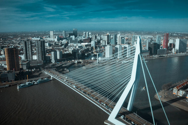 Rotterdam skyline and erasmus bridge
