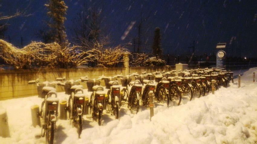 Konya Kış Winter White Bicycle Bisiklet Night Gece Sky Türkiye Whiteandblack Nature