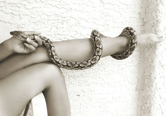 Boa Sexylegs Reptiles Snake Sensual_woman Exotic Reptile Exotic Creatures model: Naughtay Fox Snake Handler snake: dumerils boa. To see more of my work with my reptiles google professional snake handler.