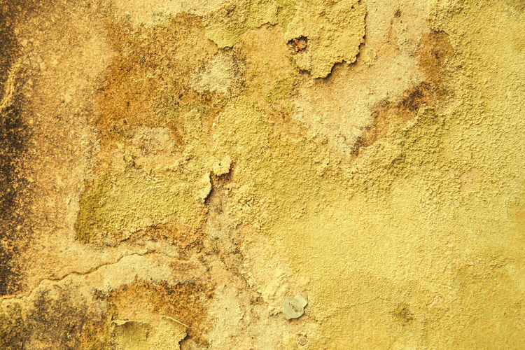 Wall Weather Architecture Backgrounds Break Cement Close-up Damaged Decomposition Deterioration Deterioration Nature Fallen Day Deterioration, Urban Decay, Neglect Dirty Floor Old Outdoors Rough Rough Texture Ruination Textured  Textured Effect Wall Weathered Yellow