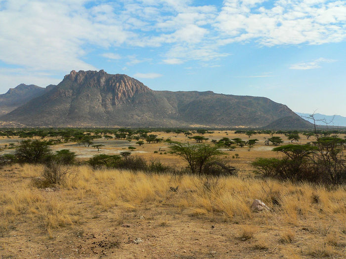 Shaba National Reserve in Northern Kenya Kenya National Park The Week On EyeEm Africa Beauty In Nature Day Grass Landscape Mountain Mountain Range Nature No People Outdoors Scenics Sky Tourism Tranquil Scene Tranquility Travel Destinations Vegetation