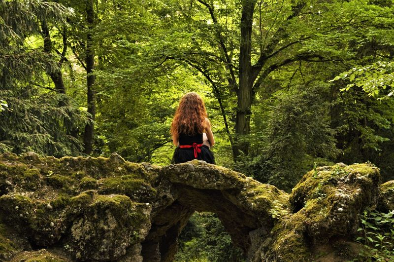 Adult Adventure Beauty In Nature Day Fairytale  Forest Full Length Green Color Growth Hiking Nature One Person One Woman Only One Young Woman Only Only Women Outdoors Real People Rear View Scenics Sitting Tranquil Scene Tranquility Tree Women Young Adult EyeEmNewHere