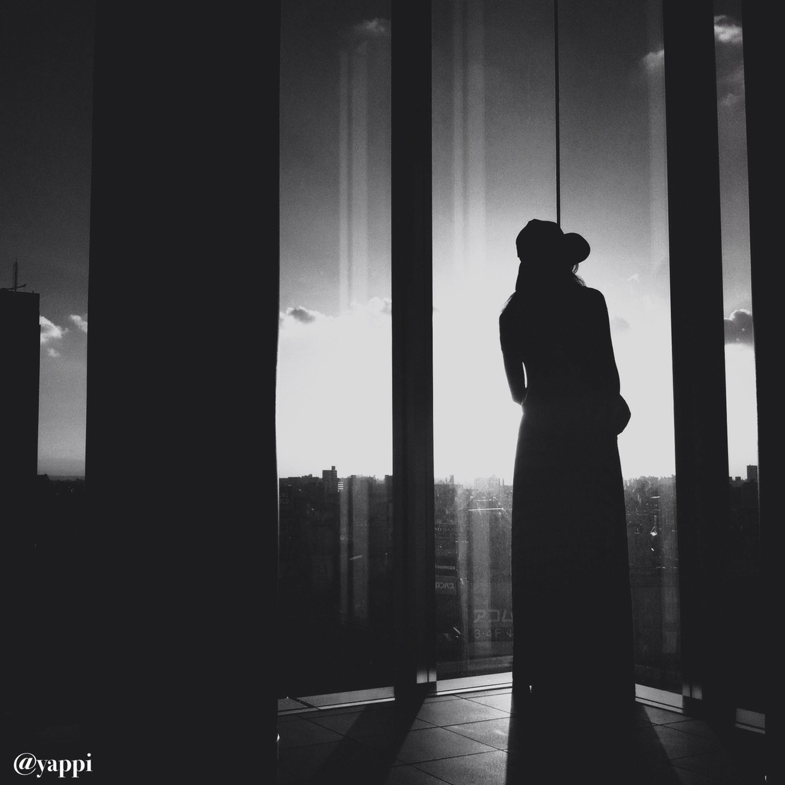 silhouette, architecture, built structure, indoors, window, building exterior, sunset, human representation, statue, dark, city, sculpture, sky, glass - material, sunlight, building, no people, art and craft, outline