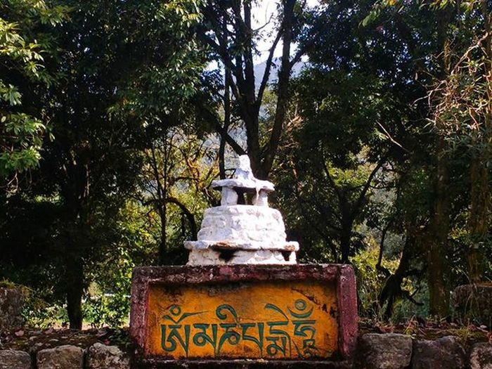 Trek to GoechaLA2015 . Yuksam Sikkim . TeamCleanUp Nopainnogain . SuddenClick Colors Instashot Instaclick Instagram Travel Instatravel ParaSight Streetphotography