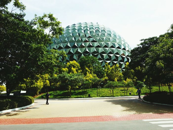 Infosys MOVIE Check This Out Things That Are Green