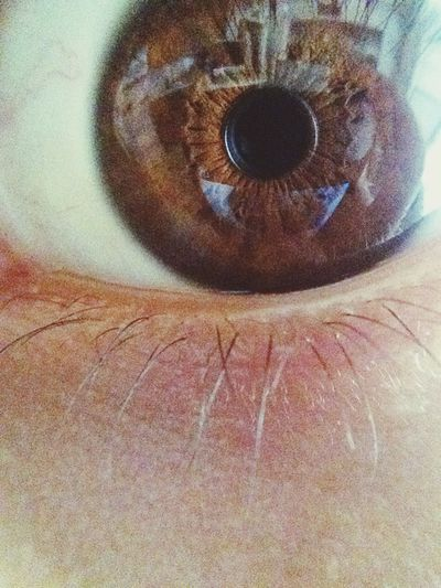 Eye Nofilter LysergicSeriesD