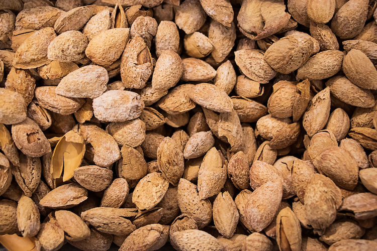 Inshell almonds close-up. a source of protein for healthy eating
