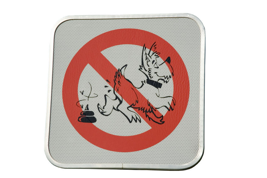 prohibition sign for dog droppings - clean up your dog's droppings Cleaning Defecation Dirt Dog Dog Droppings Dog Poop Dog Waste Dropping Droppings Feces Forbidden Guidance Interdiction Litter Littering Muck Order Poo Poop Prohibited Prohibition Sign Terrier Waste White Background