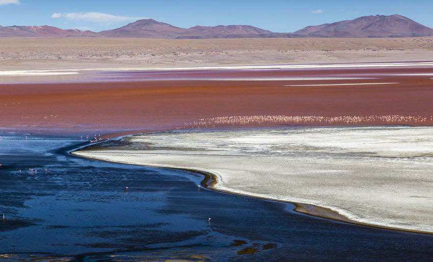 Laguna Colorada, Bolivia Aerial View Andean Andean Flamingo Beauty In Nature Bolivia Day Environment Flamingo Laguna Colorada Landscape Mountain Nature No People Outdoors Physical Geography Scenics Sky Sunlight Sunset Tranquility Travel Destinations