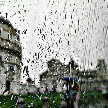 @Regrann from @igerspisa - Per coronare questa splendida domenica di sole, scegliamo questa foto di @baleniko come BEST OF THE DAY of Igerspisa TorreDiPisa Rain Drops Sotto La Pioggia Gocce Pisa, Italy Piazzadeimiracoli