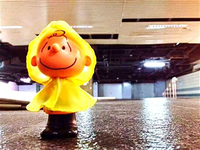 Foolintherain Charlie Brown Lovely Day