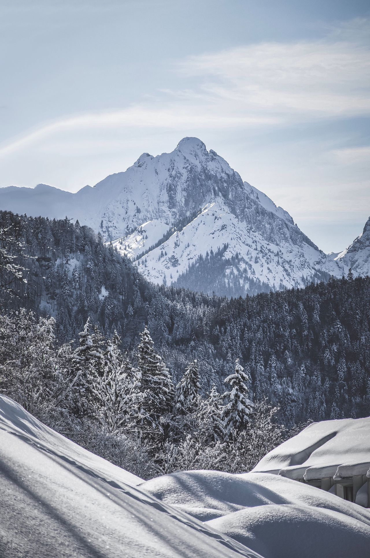 50 Snow Covered Pictures Hd Download Authentic Images On