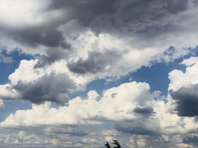 Backgrounds Beauty In Nature Cloud - Sky Cloudscape Day Fluffy Full Frame Height Idyllic Low Angle View Meteorology Nature No People Non-urban Scene Outdoors Scenics - Nature Sky Sunlight Tranquil Scene Tranquility White Color