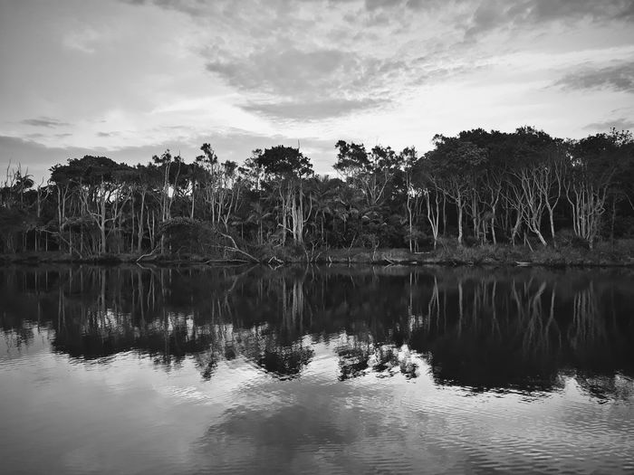 Beauty In Nature Black And White Blackandwhite Blackandwhite Photography Cloud - Sky Growth Idyllic Lake Nature No People Non-urban Scene Outdoors Reflection Reflection Lake Sky Tranquil Scene Tranquility Tree Water Waterfront