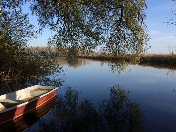 Lake Spring