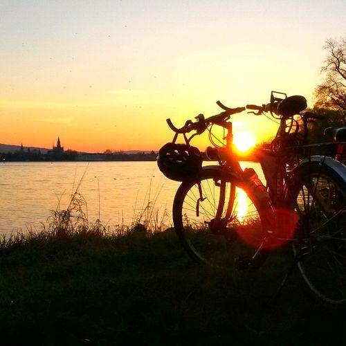 Bikes Gestern Sunset Konstanz Bodensee Münster Sonnenuntergangamsee Sundayevening Letztersonntag Timeaftertime