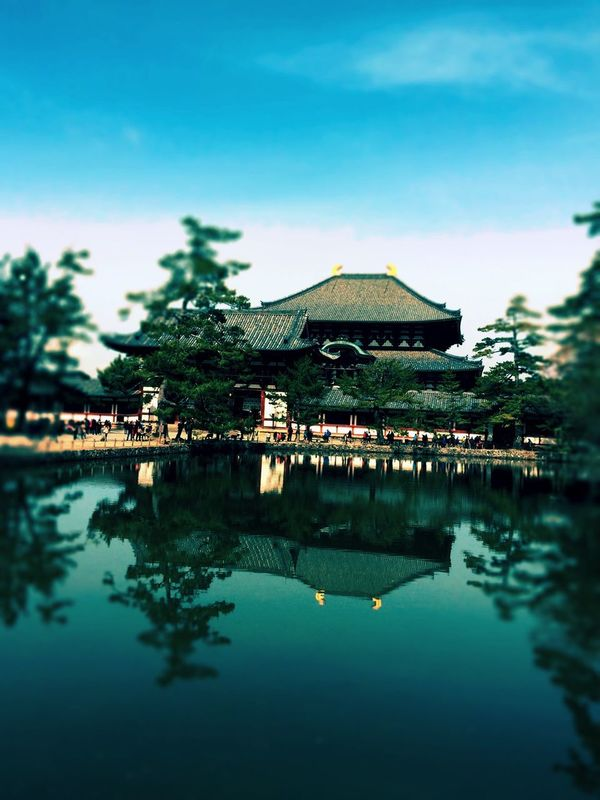 Sky EyeEm Nature Lover Sky Collection Hugging A Tree Nara,Japan Water Reflections Water_collection EyeEm Best Edits Architecture 東大寺