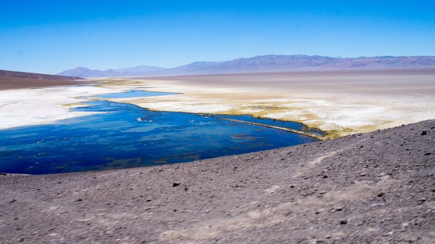 Salar de Maricunga Salt Flat Beauty In Nature Atacama / Chile 🇨🇱