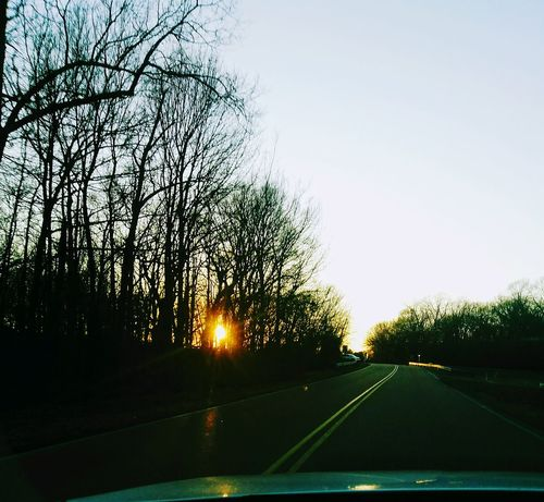 Sunshine ☀ Sunset_collection Sunset Silhouettes Tree Silhouette On The Road Driving Light Tranquility Nature Outdoors Sunlight