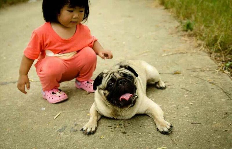 Asian Culture 小胖和同事的孩子 Relaxing