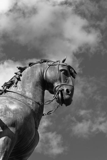 Low Angle View Madrid Plaza Mayor (Madrid). Statue Cloud - Sky Day Detail Horse No People Outdoors Sky Tourism