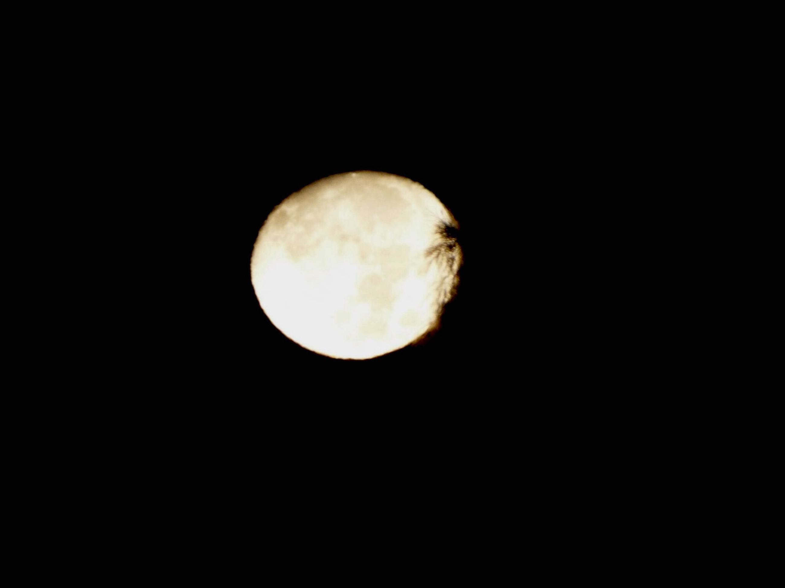 moon, astronomy, planetary moon, full moon, night, moon surface, beauty in nature, discovery, copy space, space exploration, tranquility, tranquil scene, scenics, circle, sphere, dark, nature, low angle view, exploration, majestic