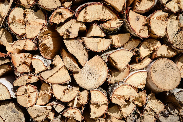 Abundance Arrangement Backgoundsun Backgrounds Close-up Day Deforestation Firewood Fossil Fuel Large Group Of Objects Log Nature No People Outdoors Repetition Stack Stack Of Firewood Timber Wood - Material Beautifully Organized