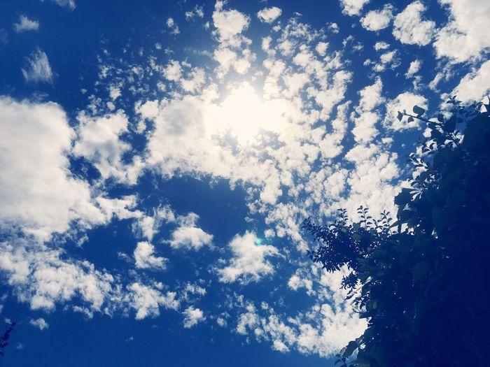 Sun Clouds And Sky