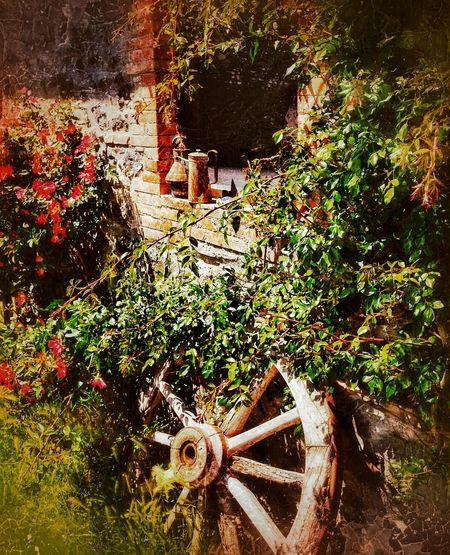 """Remembering Simpler Days"" - Pulicaro - Agriturismo e B&B Italy Italia Photobydperry Day Outdoors No People Close-up Stone Wall Bedandbreakfast Restaraunt Nature Wagonwheel Nature Window"