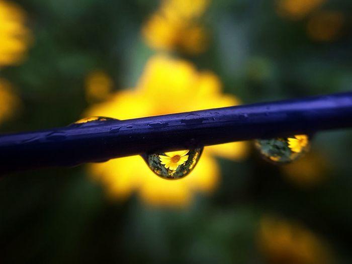 5am. in raining