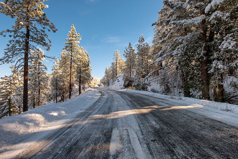 Sunday drive Snow Winter Cold Temperature Tree Plant Nature Sky Sunlight Covering Environment Road Tranquility No People Transportation Beauty In Nature Scenics - Nature The Way Forward Tranquil Scene Day Outdoors