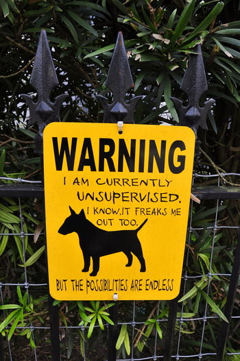 Communication Dog No People Outdoors Sign Post Text Warning Sign Yellow