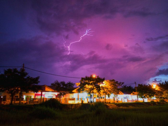 Petir di langit EyeEmNewHere EyeEm Nature Lover Tree Oil Pump Forked Lightning Storm Rural Scene