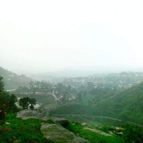 Fog Rain HillWalk Palampur Utrala ....little Hiking ....now tag Game Landscape Cloudscape Fogscape RainScape Instascape Instapic Instanature Hillscape Raingram Cloudgram Naturegram