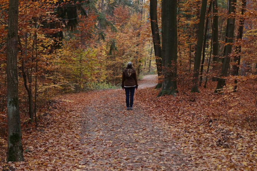 Deep respect - wonderful nature Standing Woman Woman In Forest Tree Full Length Leaf Women Autumn Forest Change Rear View Fallen Leaves Autumn Collection Fallen Leaf 50 Ways Of Seeing: Gratitude