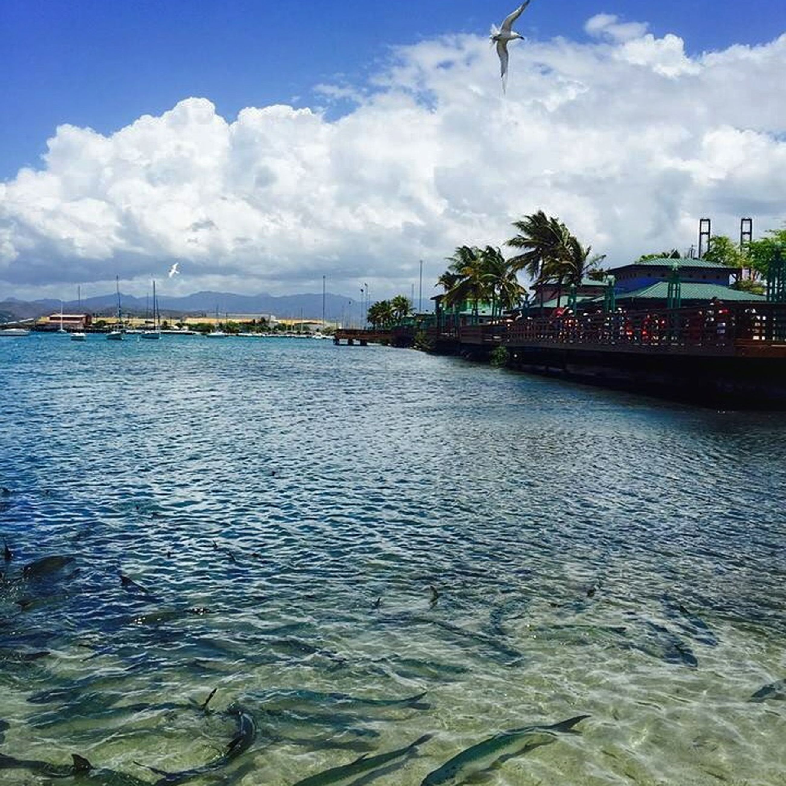 water, sky, cloud - sky, cloud, cloudy, sea, built structure, waterfront, rippled, architecture, river, building exterior, transportation, nature, scenics, blue, city, tranquility, day, tranquil scene