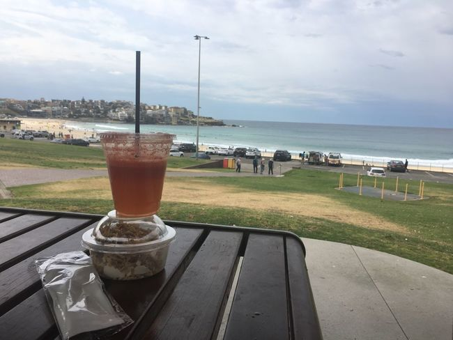 Breakfast view Bondi Beach. Sea Water Sky No People Table Drink Horizon Over Water Day Outdoors Beauty In Nature Nature Close-up