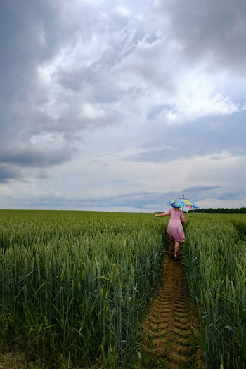 Rear view of woman carrying umbrella while walking amidst plants on field