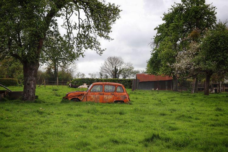 Old Car EyeEm