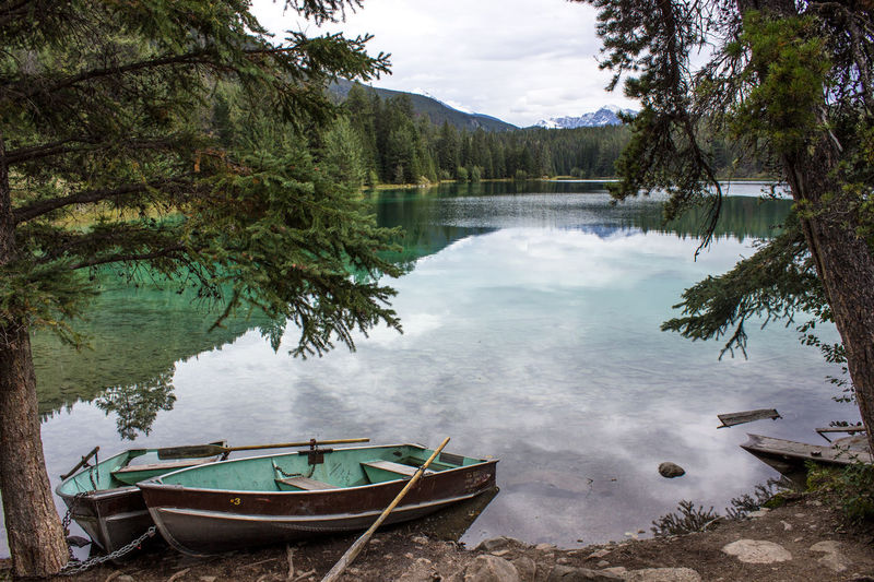 Beauty In Nature Day Forest Green Jasper Jasper National Park Lake Lakeshore Landscape Mountain Natural Disaster Nature Nautical Vessel No People Outdoors Reflection Scenics Sky Tranquility Tree Water