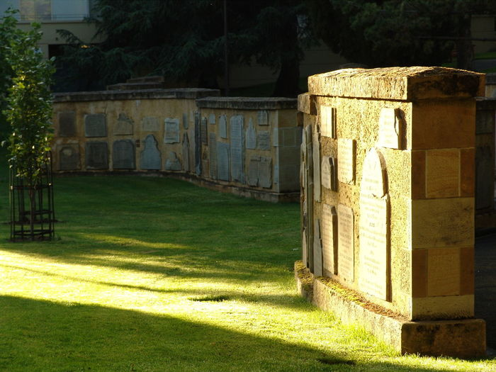 Day Grass No People Outdoors Plaques Sandstone Shadow Sunlight
