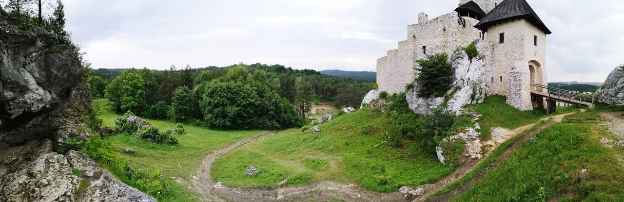Castle Height Hill Castle On A Hill Poland Is Beautiful Tree History Rural Scene Sky Architecture Building Exterior Grass Built Structure Fortress Fort Lookout Tower Fortified Wall Medieval Ivy