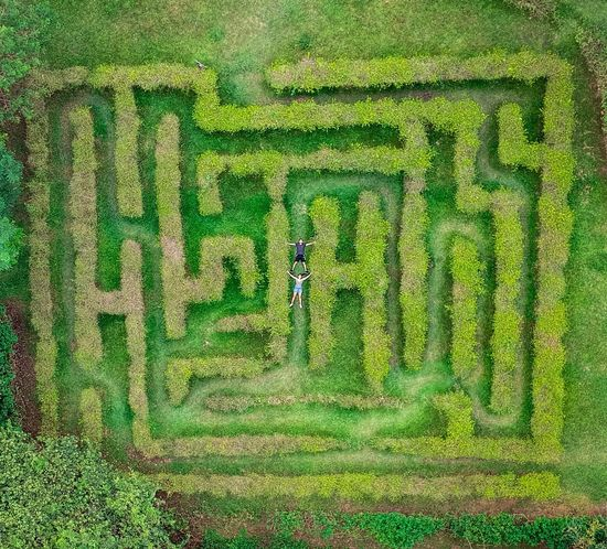 Connected By Travel Green Color Grass Real People Outdoors Day Growth One Person Architecture Nature People