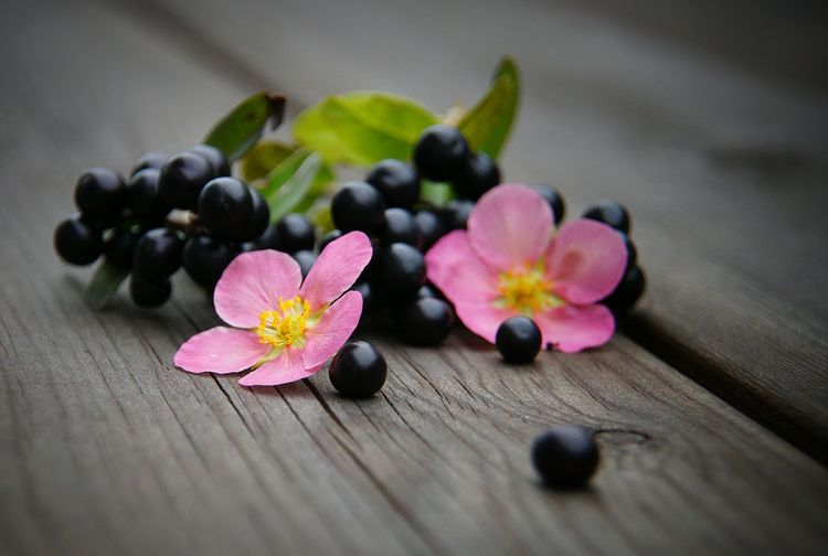 Close-up of flowers and grapes on table