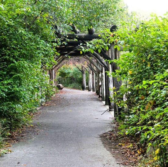 Park Prospect Park