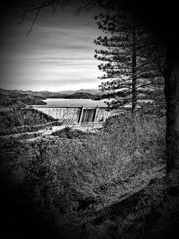 The Dam Taking Photos Redding, Ca Shasta Dam Shasta County Shasta ❤ Lakes  Relaxing Nature Photography Nature_collection Scenic