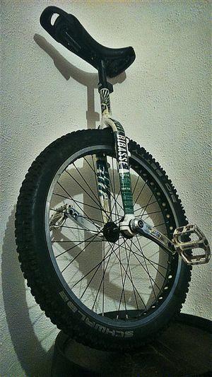 Bibasse Unicycle