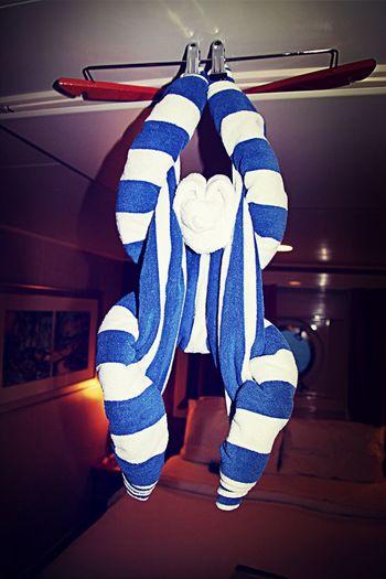 Towel Animal Towel Hotel Cruise